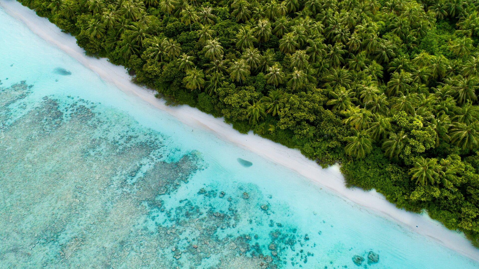vue aérienne nature île océan