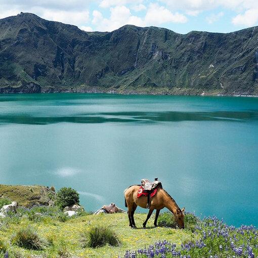 Explosion de nature andine et pacifique…