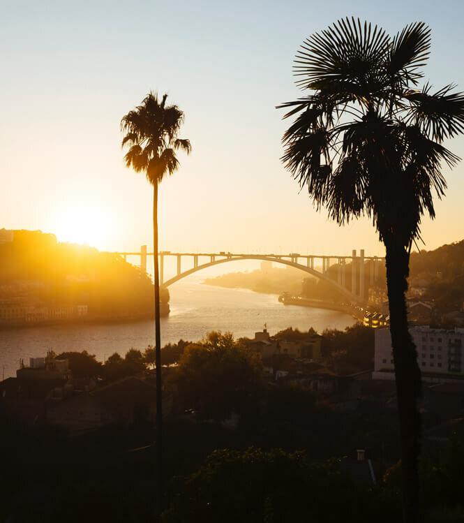 Dégustation et jardin secret au coeur Porto