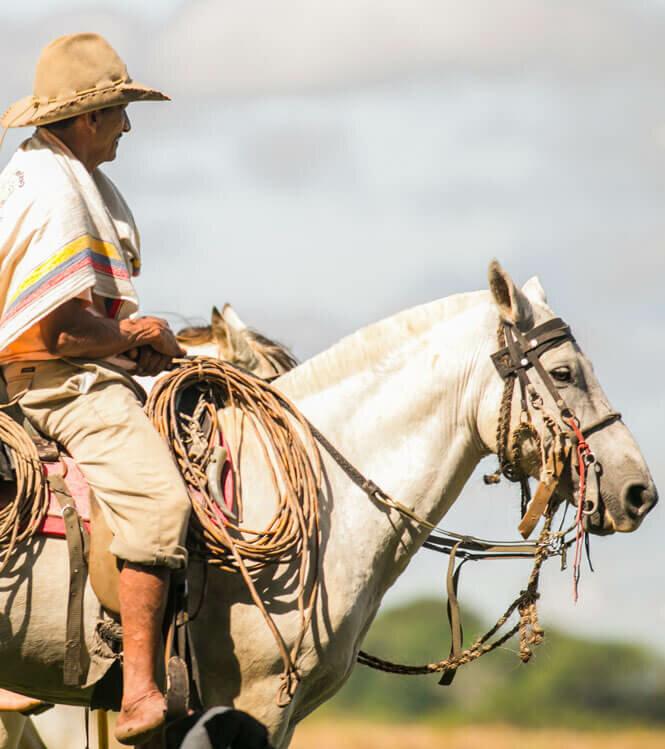 A cheval dans les plaines des Llanos Orientales
